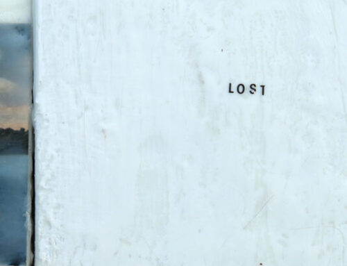'THE LOST WORDS' PROJECT.
